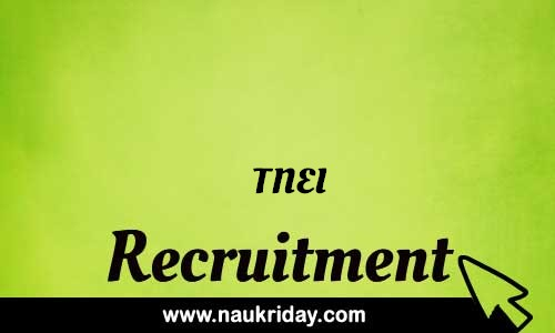 TNEI Recruitment Bharti post Sarkari Naukri Job Vacancy Notification available online