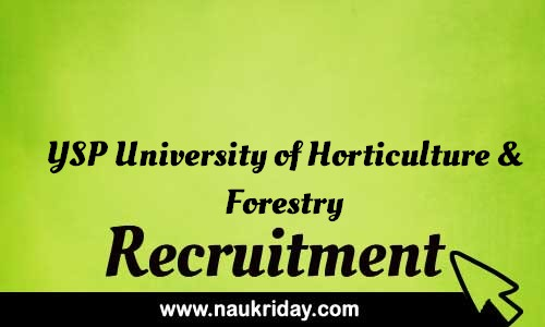 YSP University of Horticulture and Forestry Recruitment Bharti post Sarkari Naukri Job Vacancy Notification available online