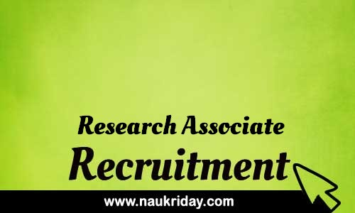 Research Associate Related govt Government job notification | sarkari Naukri download pdf online
