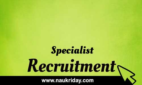 Specialist Related govt Government job notification | sarkari Naukri download pdf online