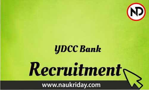 YDCC Bank Recruitment Bharti post Sarkari Naukri Job Vacancy Notification available online