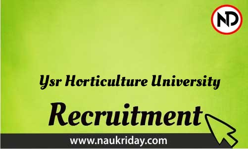 Ysr Horticulture University Recruitment Bharti post Sarkari Naukri Job Vacancy Notification available online